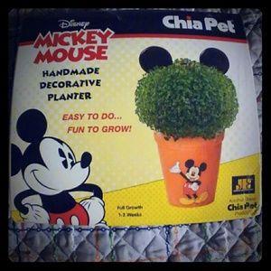 Mickey Mouse Chia Pet